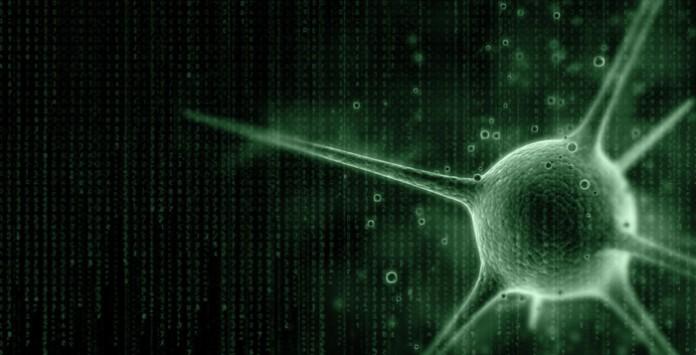 Hava durumu virüsü tehlike saçıyor