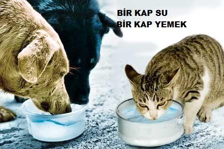 RAMAZAN GELDİ, HOŞ GELDİ