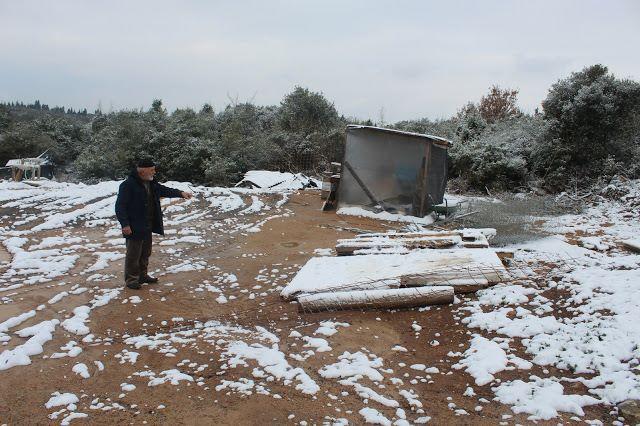 Demirciler'de arıcının konteyneri kaldırtıldı