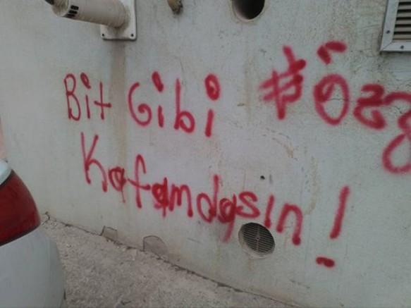 BİT GİBİ KAFAMDASIN!