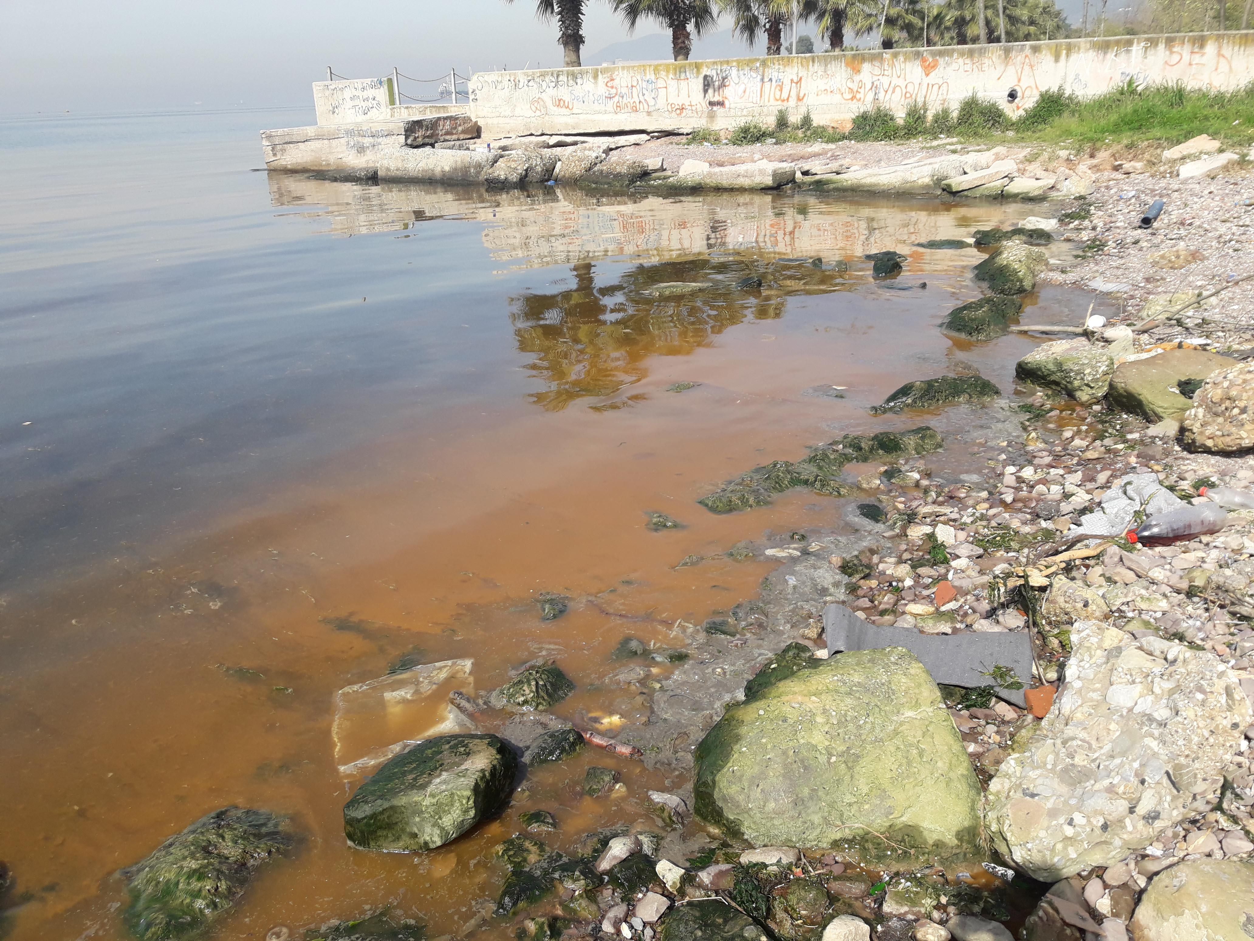 Gemiden bırakılan atıkla sahil kirlendi