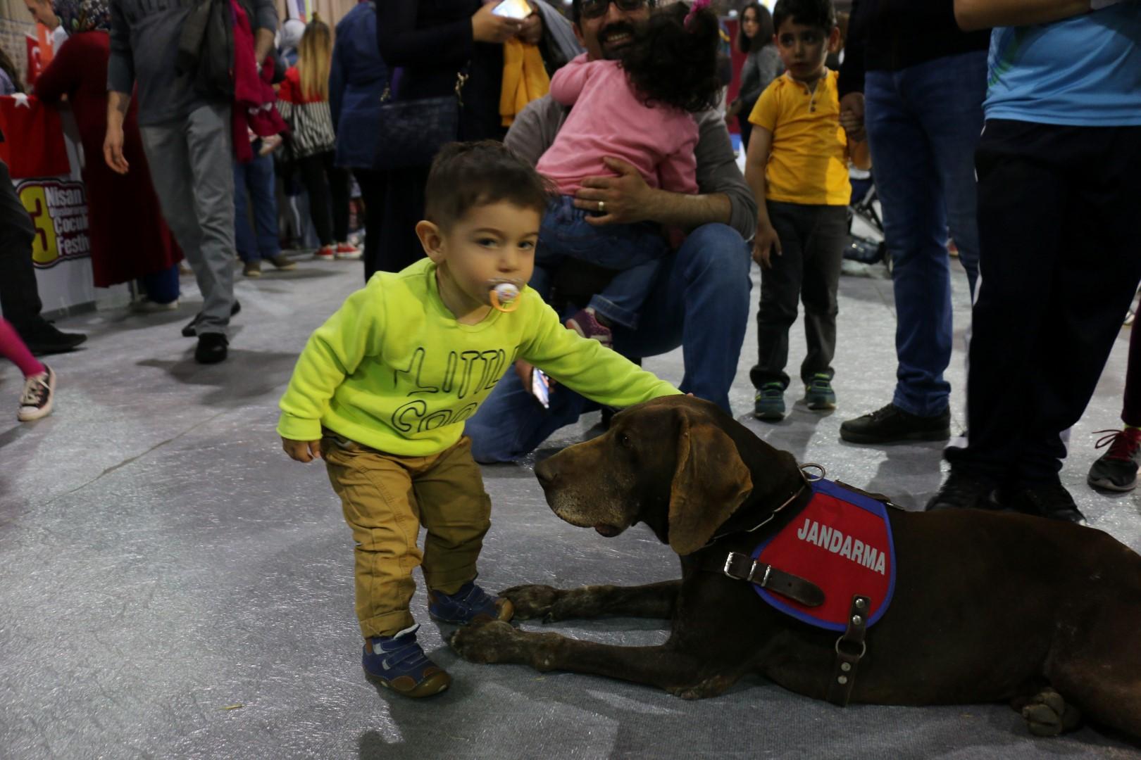 Jandarma köpeği Vaka ilgi odağı oldu