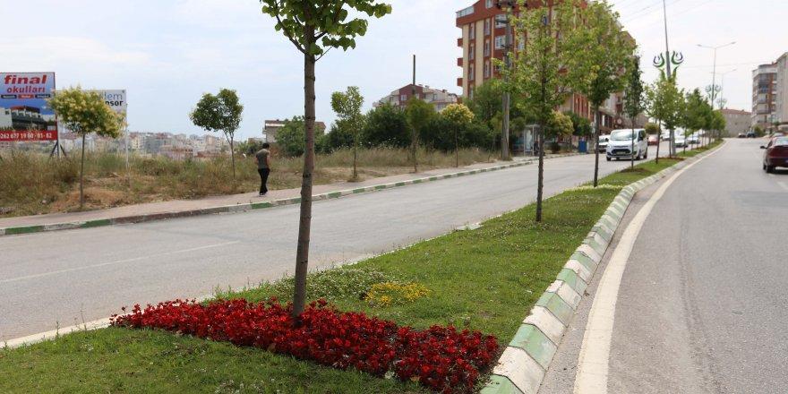 Çayırova'nın caddeleri yeşilleniyor
