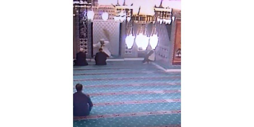 Camiye giren kedi ortalığı birbirine kattı
