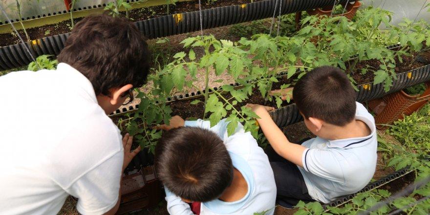 BÜYÜKŞEHİR:  Okullara ''Üretken mutlu çocuklar bahçesi''