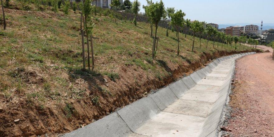 2. ETABA: Tatlıkuyu Vadisi'ne 3 bin ağaç