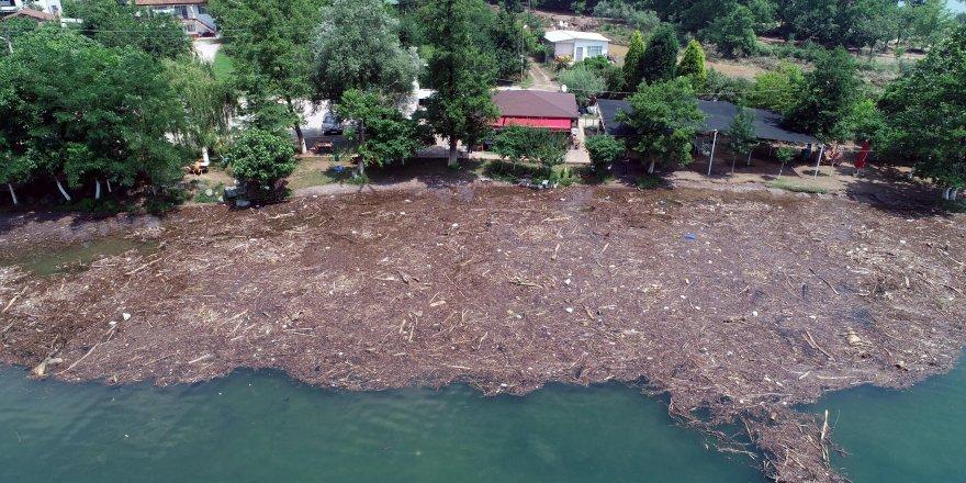 Selin sürüklediği ağaçlar gölü kapladı
