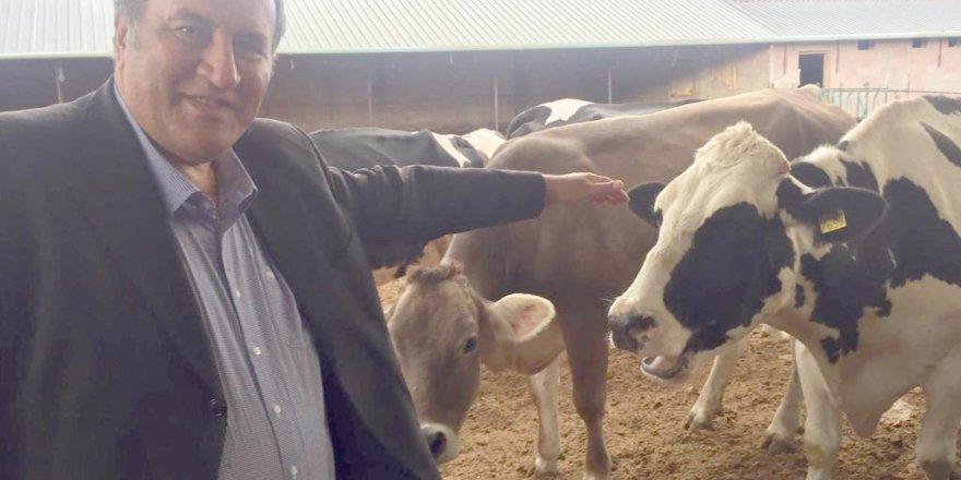 """SÜT ÜRETİCİSİ:   """"Süt Konseyi fiyatı ile süt satamıyoruz"""""""