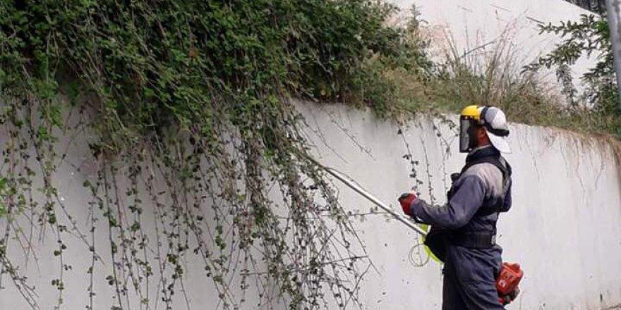 DİLOVASI: Görüntü kirliliği ortadan kaldırılıyor
