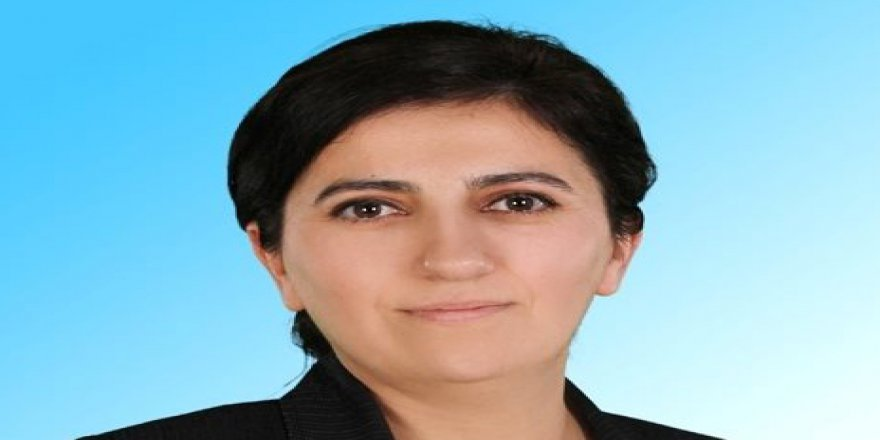 İYİ Parti'de Akçay istifa etti