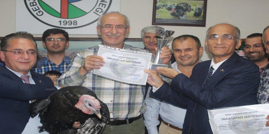 Son şampiyon Ali Aksoy