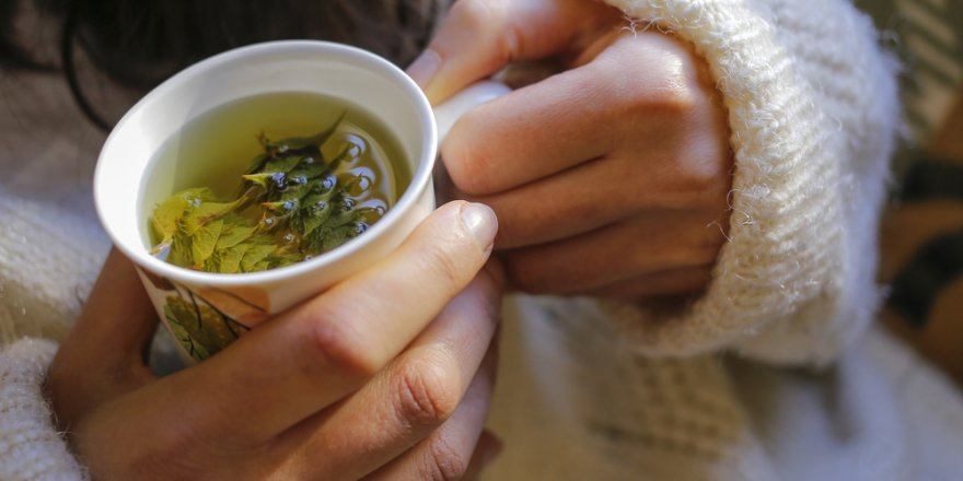 Bitki Çaylarını Tüketirken Dikkat!