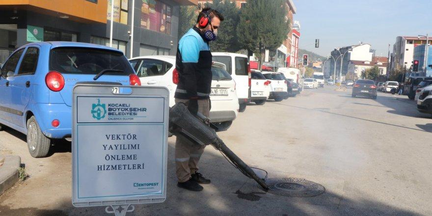 Sivrisinek ile mücadele devam ediyor