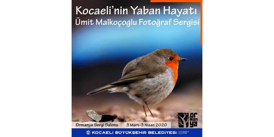 Malkoçoğlu fotoğraflarını sergileyecek