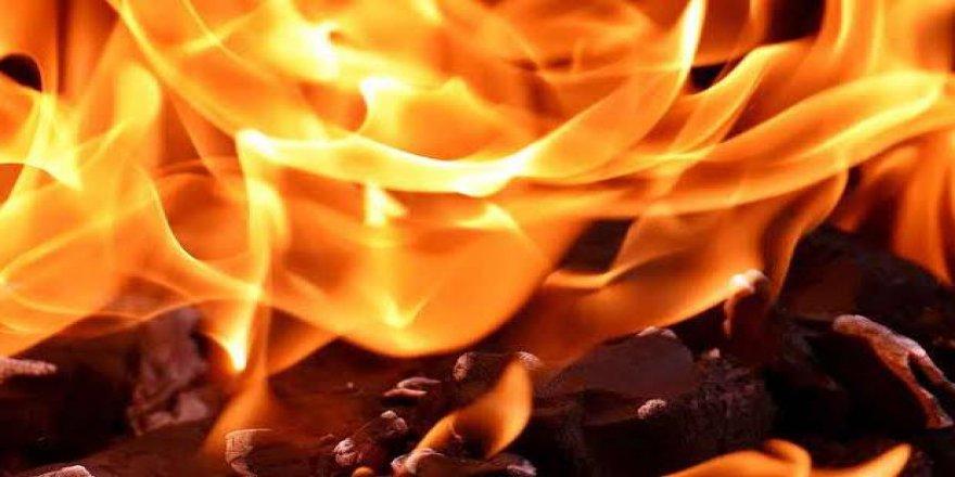 Darıca'daki yangında 4 kişi kurtarıldı