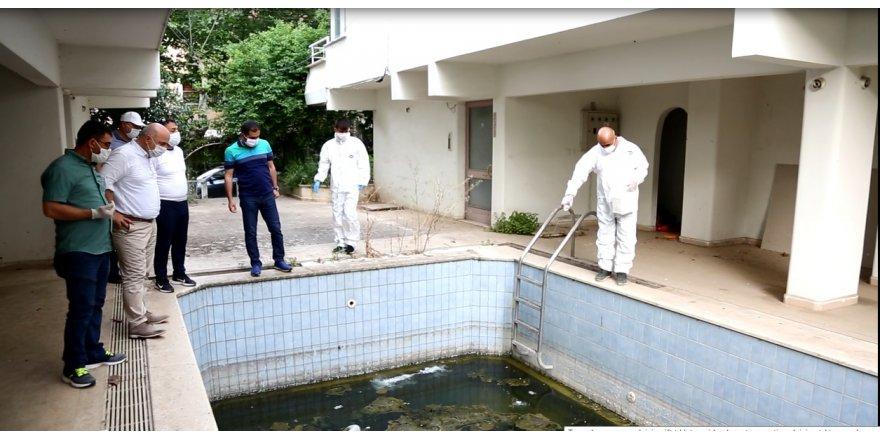 Darıca Belediyesi sivrisinekle mücadele ediyor