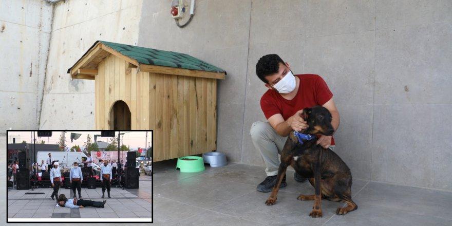 İzmit Belediyesi, Türkiye'yi gülümseten  can dostumuzu sahipsiz bırakmadı