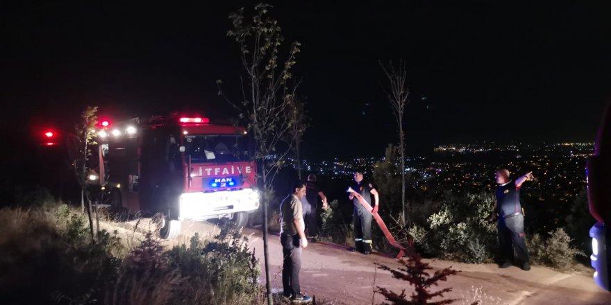Gebze'de çok sayıda ağaç yandı