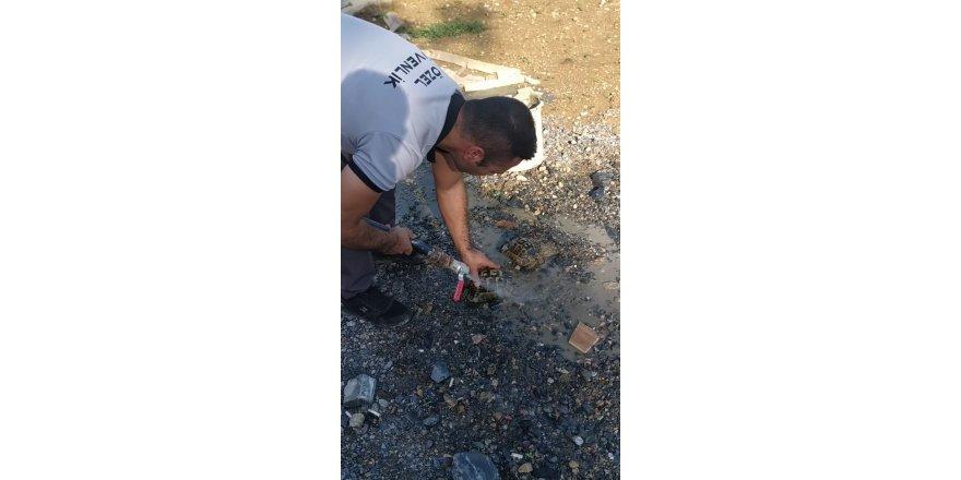 Kaplumbağaları itfaiye kurtardı