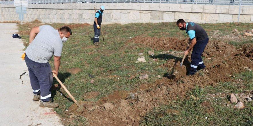 Bin ton temiz toprak serildi
