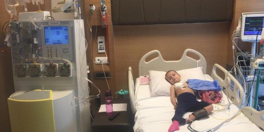 Kanser Hastası Minik Alya duyarlı vatandaşlardan yardım bekliyor    ALYA'YA UMUT OL