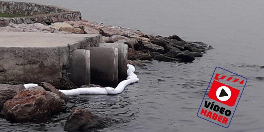 Deniz kirliliğinin nedeni bulundu