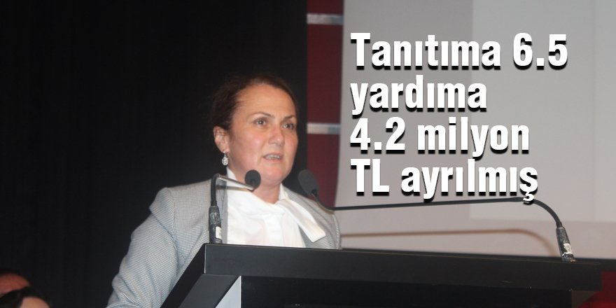 Tanıtıma 6.5 yardıma 4.2 milyon TL ayrılmış
