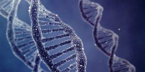 Bilim insanları DNA'ya virüs depoladı!