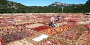 Antalya'nın halı tarlaları