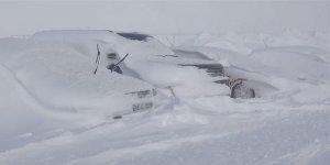 Beyaz cennette araçlar kar altında