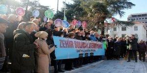 Bursa'da çevrecilerden termik santral eylemi