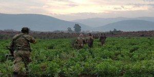 Terör örgütüne Afrin'de darbe üstüne darbe...