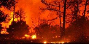 Yunanistan'daki yangında en az 50 kişi yaşamını yitirdi