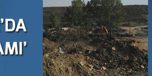 'Kirazpınar'da ağaç katliamı'