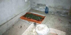 Mezarlıkta uyuşturucu operasyonu: 1 gözaltı