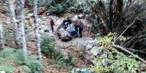 Defineciler ormanda yakalandı