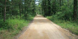 Gebze'ye 20 kilometre yürüyüş yolu