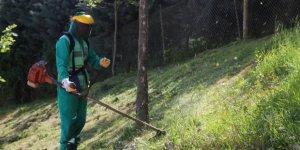 Yeşil alanlarda bahar temizliği