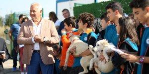 GEBKİM OSB 98 sokak köpeğinin bakımını üstleniyor
