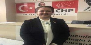 CHP Kadın Kolları Başkanı özür diledi!