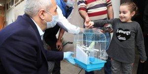 Büyükgöz'den  küçük Yaren'e muhabbet kuşu