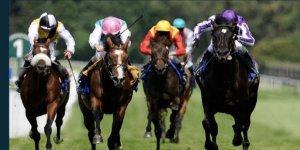 At yarışları 1 ay sonra başlıyor