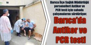 Darıca'da Antikor ve PCR testi
