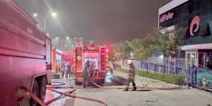 Dilovası'nda fabrikada yangın