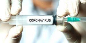 Zatüre aşısı Kovid-19'dan korumaz