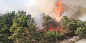 Gaziler Dağı'nda 3 dönüm alan yandı!