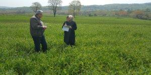 Büyükşehirden çiftçilere yüzde 50 hibeli tohum desteği