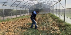 'Özel bireyler' serada sebze yetiştiriyor