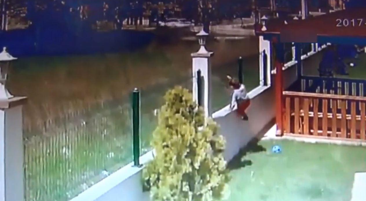 Sakarya'da Köpek Saldırısı